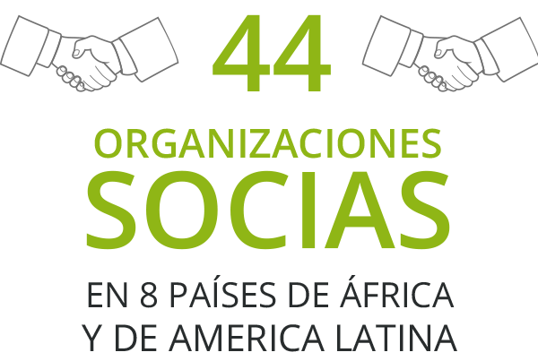 44-partners-ES