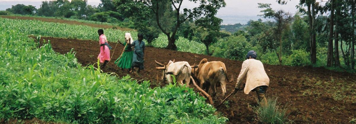 inner-ethiopie