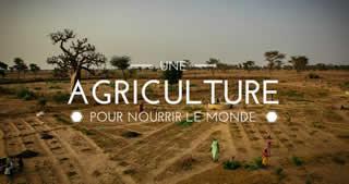 Plateforme Agriculture Familiale