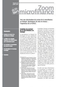 Vers une structuration du secteur de la microfinance au Sénégal : dynamiques de mise en réseau – l'expérience de la FONGS