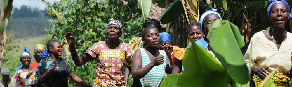 RDC header