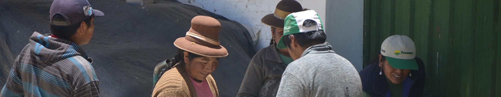 REMURPE (Red de Municipalidades Urbanas y Rurales del Perú)