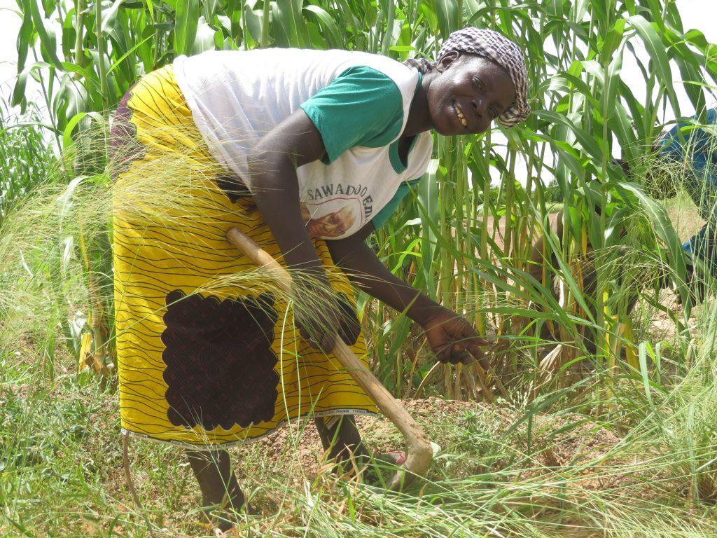 Agroécologie au Burkina Faso