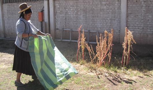 Assurer le financement des exploitations familiales dans les Andes