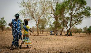 L'émancipation des agricultrices paysannes : une question épineuse abordée dans le nouveau Défis Sud