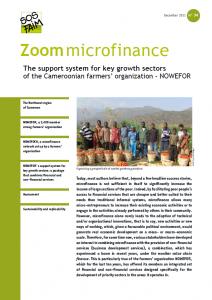 El sistema de apoyo a los sectores prometedores de la organización campesina camerunesa NOWEFOR