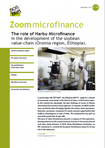 The role of Harbu Microfinance in the development of the soybean value-chain (Oromia region, Ethiopia).