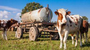 Manifestation : La crise du lait est loin d'être terminée !