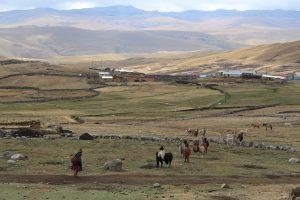 La mayor concentración de pobres se sitúa en la región andina, principalmente rural : 72% de los pobres extremos viven en esta región.