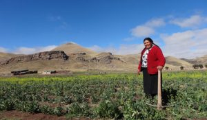 Au Pérou, la richesse augmente aussi vite que les inégalités !