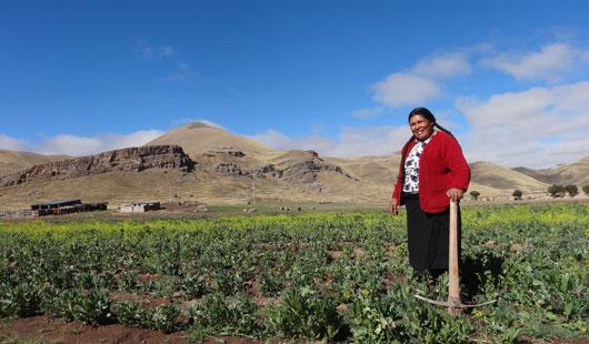 En Perú, la riqueza aumenta al mismo ritmo que las desigualdades.