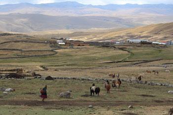 La majeure concentration de la pauvreté se situe dans la région andine, qui est principalement rurale : on y trouve 72% de l'extrême pauvreté du pays.