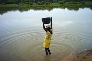 •Les femmes ne détiennent que 2% des terres •Seulement 5% de tous les services de vulgarisation agricole à l'échelle mondiale sont dispensés aux femmes •En Afrique, seuls 10% des crédits agricoles sont octroyés aux femmes
