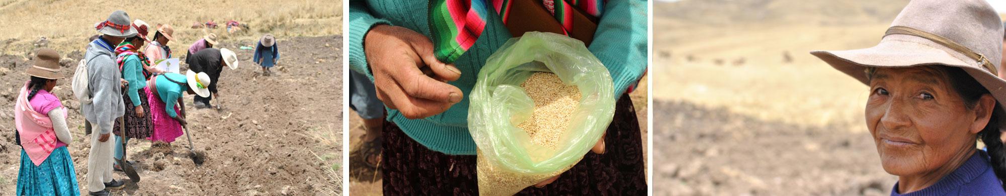 Appel aux dons : les agriculteurs péruviens ont besoin de vous !
