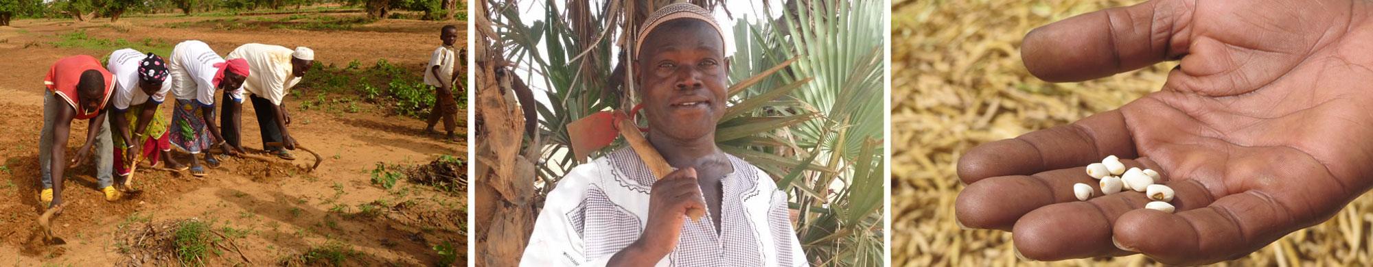 Appel aux dons : aidez Zore, sa famille et des milliers d'autres paysans à affronter les caprices du climat au Burkina Faso !