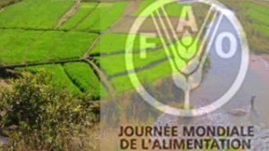 Journée mondiale de l'alimentation : Le climat change, l'alimentation et l'agriculture aussi