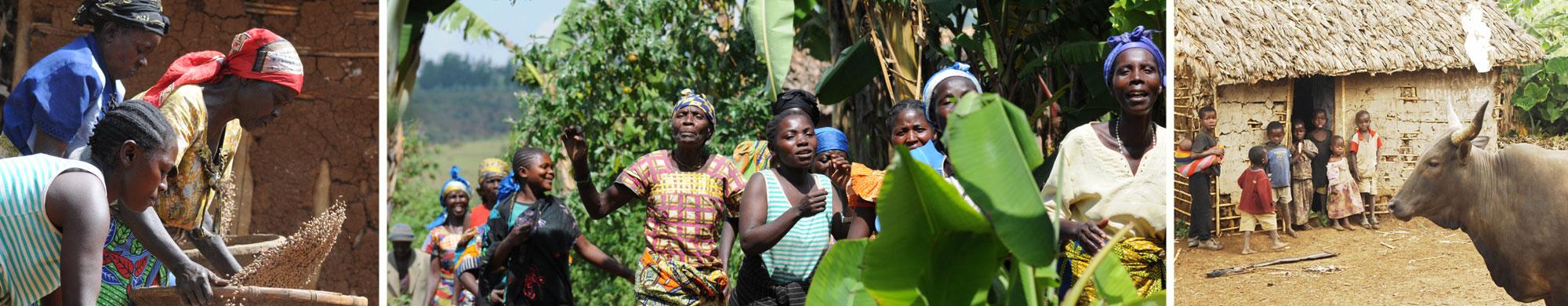 Aidez les femmes paysannes à combattre les injustices en RDC !