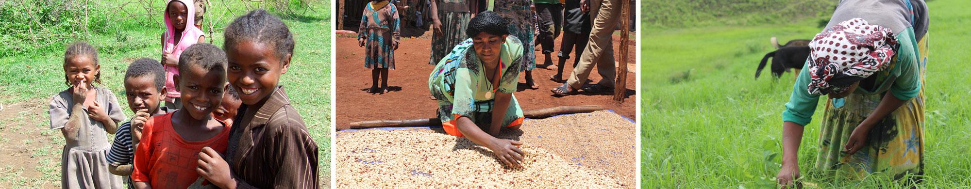 Les caisses rurales : une solution contre la faim en Éthiopie