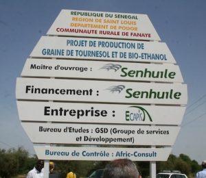 Accaparement de terres au Sénégal : où en est le projet Sénéthanol-Senhuile ?