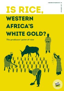 Is rice, western africa's white gold ?