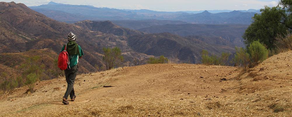 Paysage des Andes boliviennes