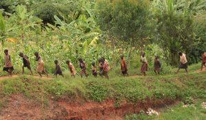 Éducation et politique, deux leviers pour réconcilier jeunesse et agriculture