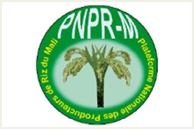 PNPR - La Plateforme Nationale des Producteurs de Riz du Mali-logo