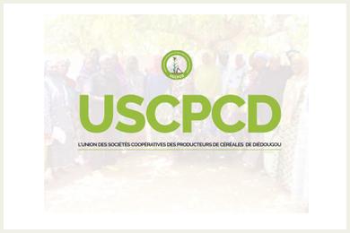 USCPCD - Union des Sociétés Coopératives de Producteurs de Céréales du Diédougou-logo