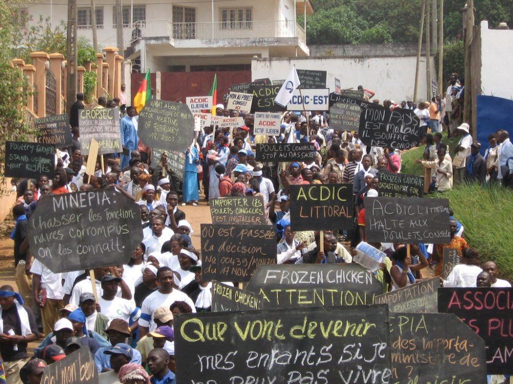 Journée des luttes paysannes : la menace d...