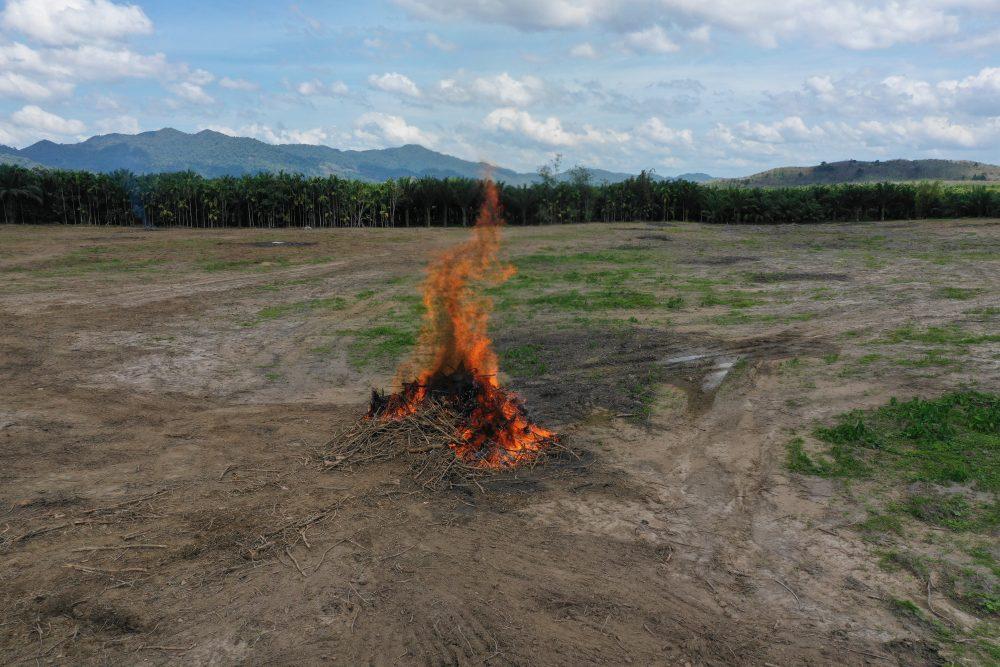 RDC : la plainte des communautés contre Fe...