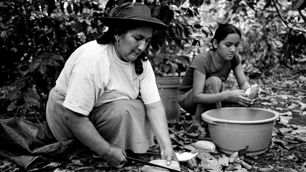 Au Pérou : les producteurs face à la crise...