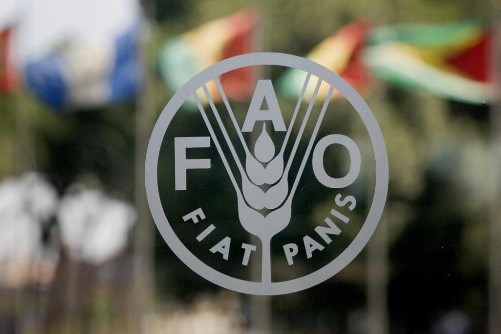 L'agriculture familiale à la FAO: utopie o...