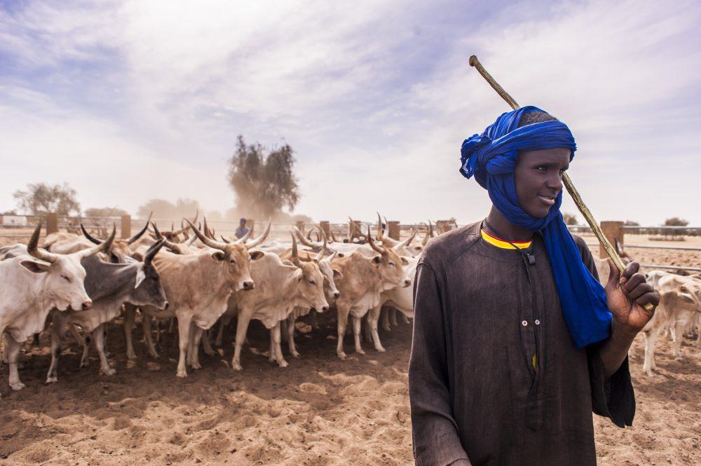 Accaparement de terres au Sénégal : où en ...