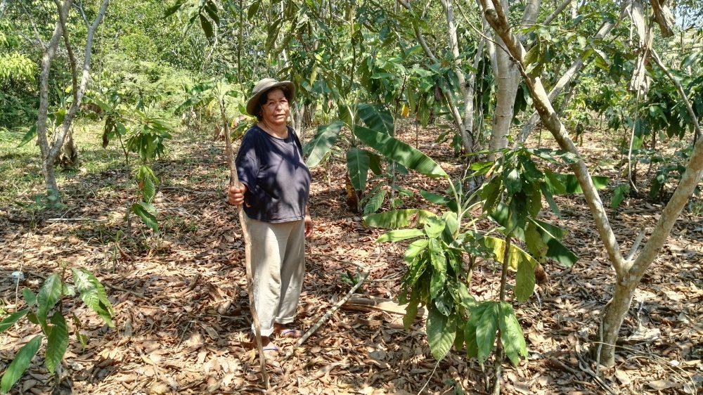 Retour sur la grève paysanne au Pérou : 6 ...