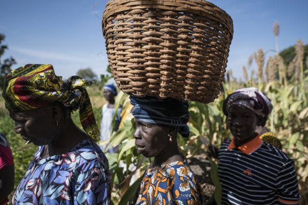 https://www.sosfaim.be/wp-content/uploads/2019/09/Burkina-1148-600x400.jpg