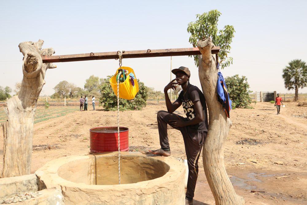 PARERBA : 6000 emplois agro-alimentaires e...