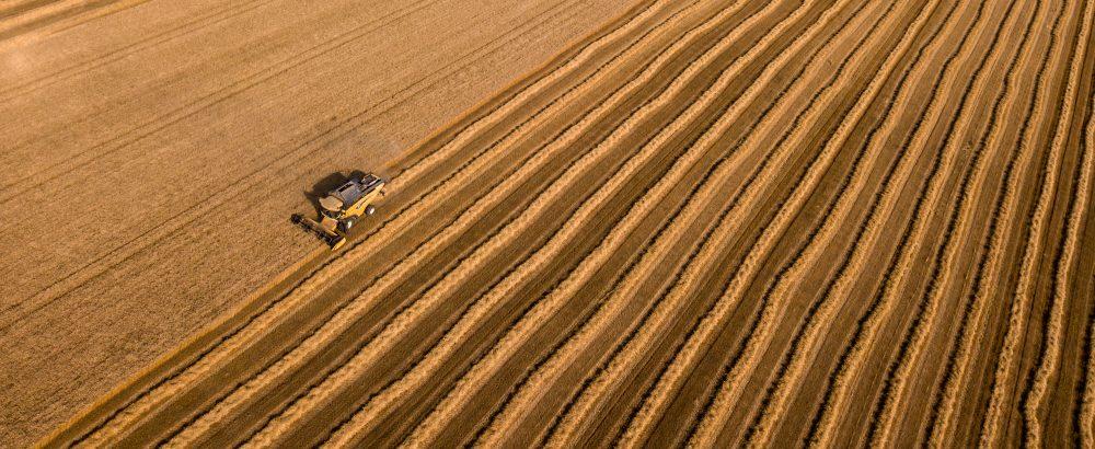 Changement climatique, agriculture intensi...