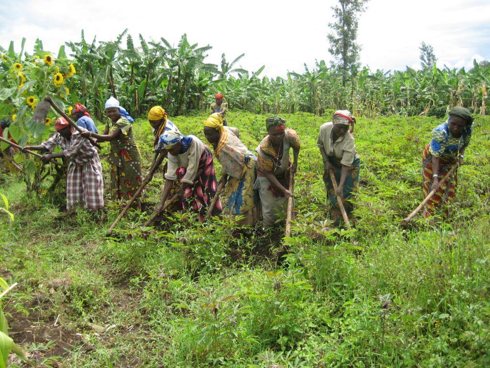 Les agricultrices détiennent les clés du c...