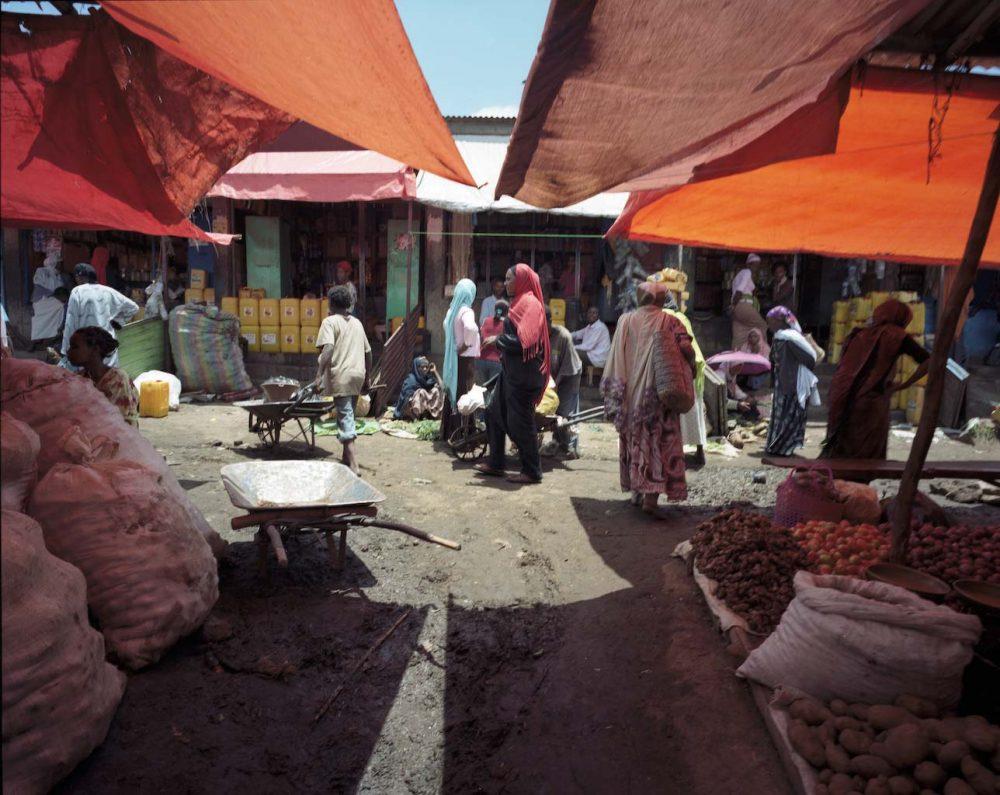 L'Éthiopie au temps du Covid-19 : récit d'...