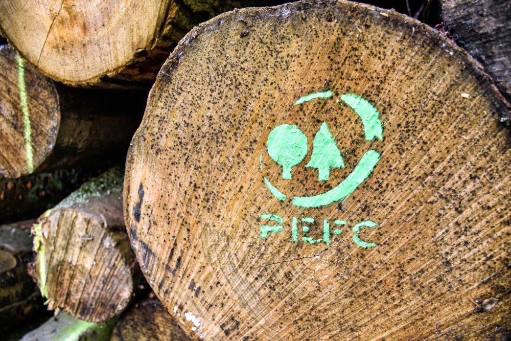 Les labels forestiers: à quel bois se fier ?