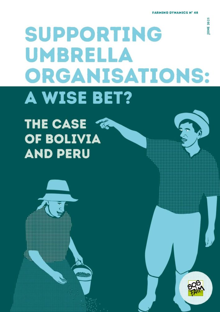 Supporting umbrella organisations: a wi...